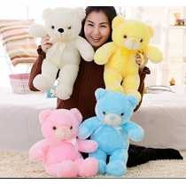 EZ Life Illuminating 7 Color LED Light - Teddy Pillow Plush Soft Toy