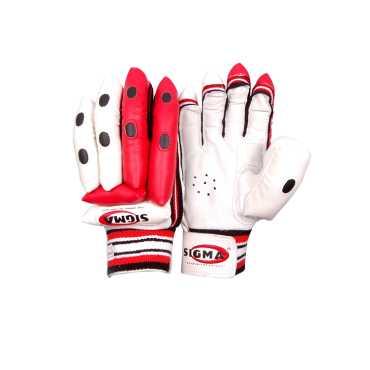 Sigma Pro Test Batting Gloves Men