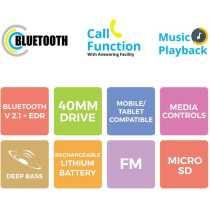 Zebronics Raga Bluetooth Headphones