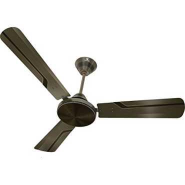 Standard Robusta 3 Blade (1200mm) Ceiling Fan - Black | Gold