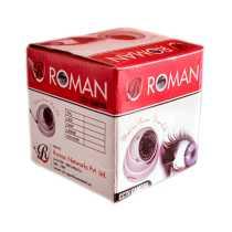 Roman 1.3MP 48IR/30Mtr Dome IR Camera - White
