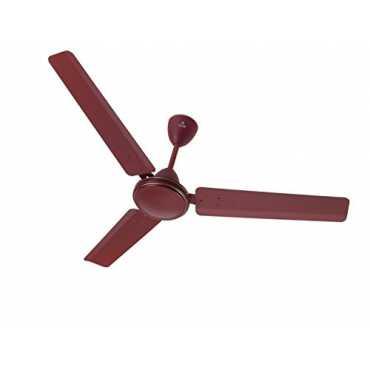 Polycab Amaze 3 Blade (1200mm) Ceiling Fan - Brown